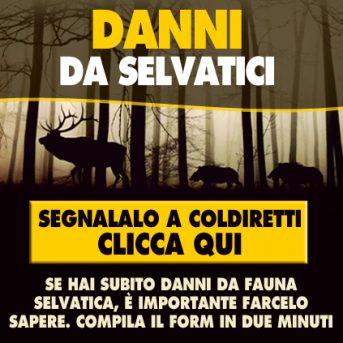 Danni da selvatici - Segnalalo a Coldiretti Como Lecco