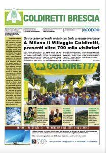 Cover Mensile Coldiretti brescia, numero estivo luglio/agosto 2019