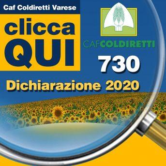 730 - ISTRUZIONI PER LA DICHIARAZIONE - VARESE