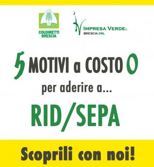 Pagamento RID/SEPA