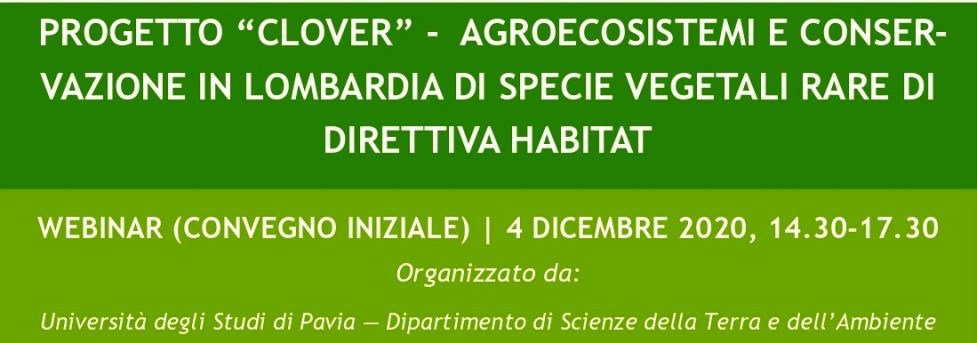 Progetto Clover