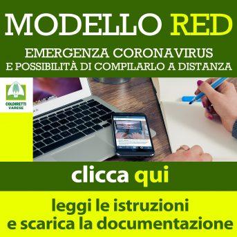 Modello Red ed Emergenza Corona Virus