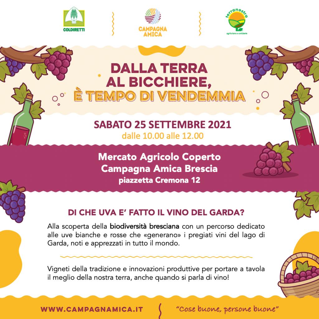 Festa dell'uva al mercato coperto di Campagna Amica Brescia
